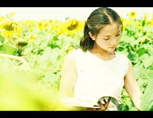The Sunflowers (2005)